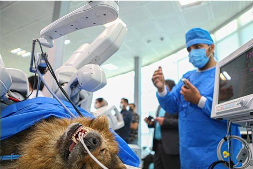 اولین جراحی رباتیک از راه دور در ایران