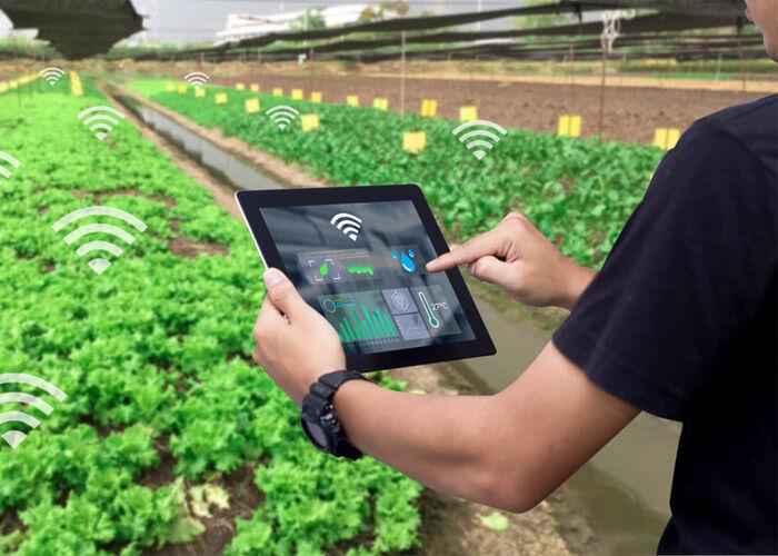 اینترنت اشیا وارد بخش کشاورزی ایران میشود